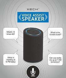 Voice Assistant Speaker