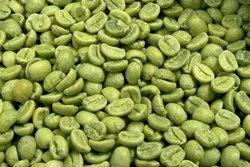 Green Coffee Extract 60% Chlorogenic Acid