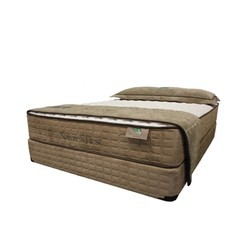 Spring Air Natures Rest Latex 6 Inch Mattress