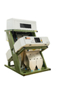 Zorba Series Masoor Dall Color Sorting Machine