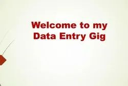 Data Entry And Data Analysis Services