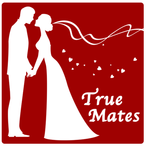 Matrimonial Android App Start Your Marriage Bureau Today in