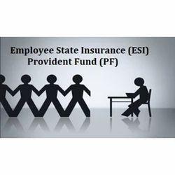 ESI and PF Registration Service