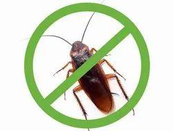 Pest Control Gel Treatment, Maharashtra