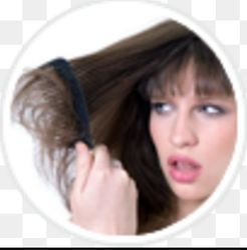 Female Hair Loss Transplants Service