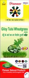 Giloy Tulsi Wheatgrass Juice 500 Ml