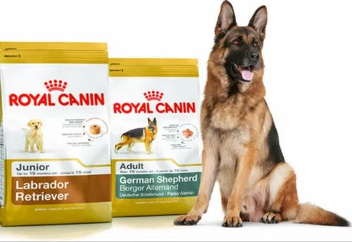 Royal Canin Dog Food Royal Canin Breed Specific Dog Food Retailer From Indore