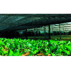 FRP Greenhouse Net 70% For Cultivation Of Ornamental Plant