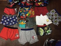 Boys Character Printed Boxer Brief