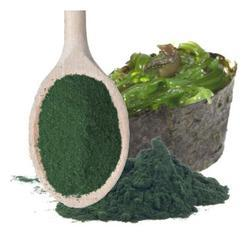 Food Grade Spirulina Extract And Powder, For Clinical And Personal Use