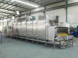 Conveyorised Continuous Dryers