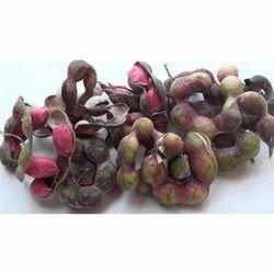 Vilayati Chinch Seeds