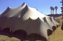 White Bedouin Stretch Tents