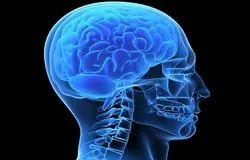 Neurosurgery Treatment Services
