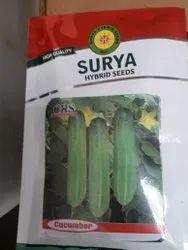 Hybrid Cucumber Seeds, Packaging Size: 5 kg
