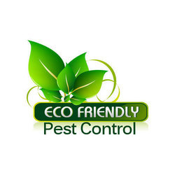 Eco Friendly Pest Control Service
