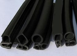 Co- Extrusion  Rubber Profile
