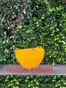 Crystal Hanging Planter