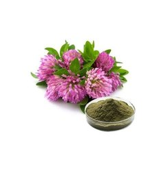 Red Clover Herb Ext