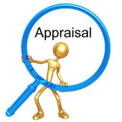 Appraisal Management Consultancy Services