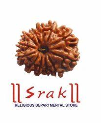 12 Mukhi Rudraskh Beads