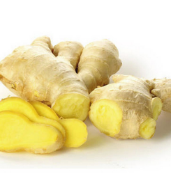 Fresh Light Yellow Ginger