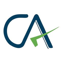 Auditing and Assurance Chartered Accountant Service