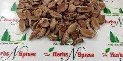 Mahua Seeds / Dolmi / Longifolia