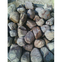 Beach Pebble Stone