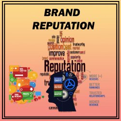 Brand Reputation Management Services