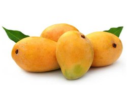 Yellow Organic Kesar Mango, Carton, Packaging Size: 10 Kg