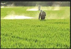 Pesticides to control Pests/ Weeds