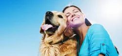 Animal Assisted Therapy Service