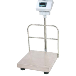 Industrial Platform Scale