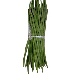 Natural Green Drumstick
