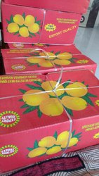 Green And Yellow Fully Organic Mangoes, Packaging Size Available: 5 Kg, Carton