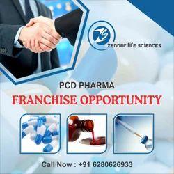 PCD Pharma Franchisee In Betul