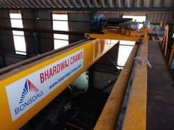 Double Girder EOT Crane in Egypt