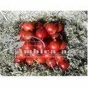 Pomegranate Fruit