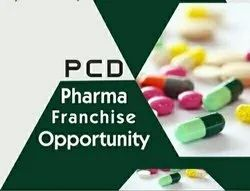 Pharma Franchise Service