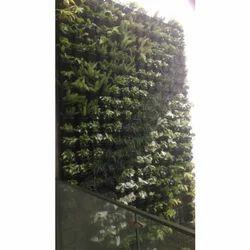 Vertical Living Green Outdoor Wall Garden