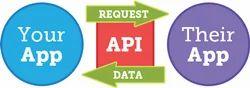 Development Interface E Way Bill API