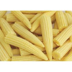 Baby Sweet Corn