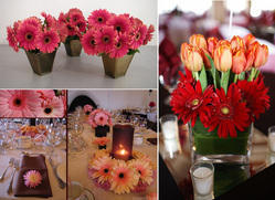 Floral Arrangement & Setup
