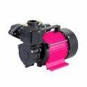 CRI Motor Shine-100
