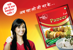 Namaste India Paneer