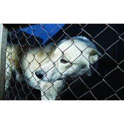 Animal Protection Fence