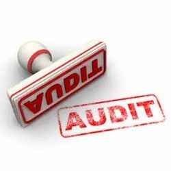 Audit Support Services