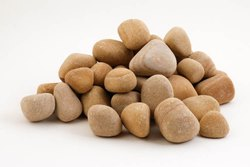 Golden Teak Stone Pebbles