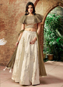 Graceful Designer Reception Wear Lehenga Choli
